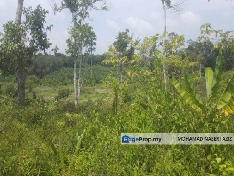LAND FOR SALE AT BENTONG PAHANG, Pahang, Bentong